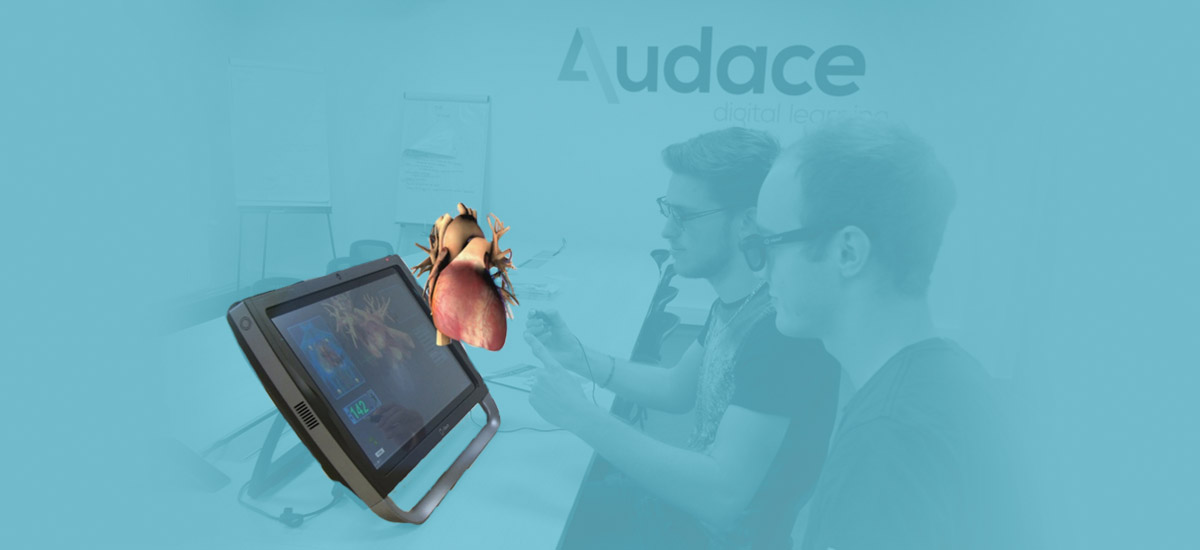 Anatomy In 3d Holography Audace Elearning